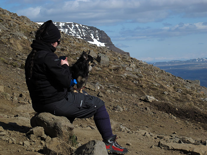 Reykjavík. Esja - the first time! - Is it more toilsome for quadruped than for human being hiking on this mountain? (5 May 2012)