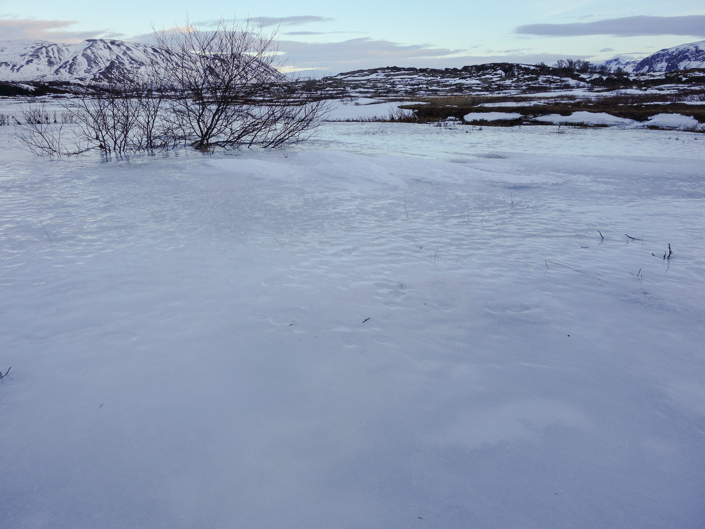 Þingvellir. Short trip. - Þingvellir, frozen ... I. (5 January 2014)