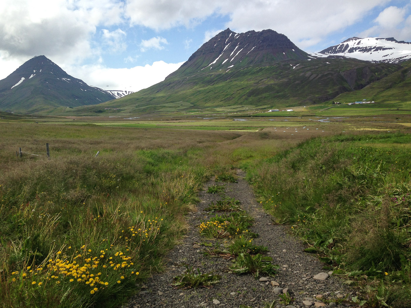 Northern Iceland - Svarfaðardalur. On vacation. - Hiking to lake Skeiðavatn. I. (21 July 2014)