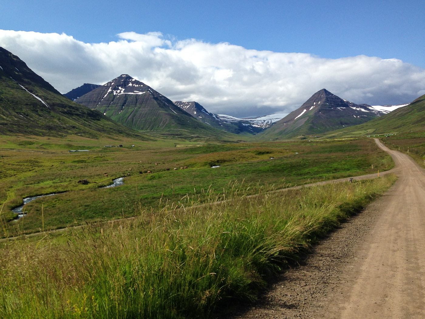 Northern Iceland - Svarfaðardalur - Grímstunga. On vacation. - Leaving Skeið :-( ... Bless bless! (23 July 2014)