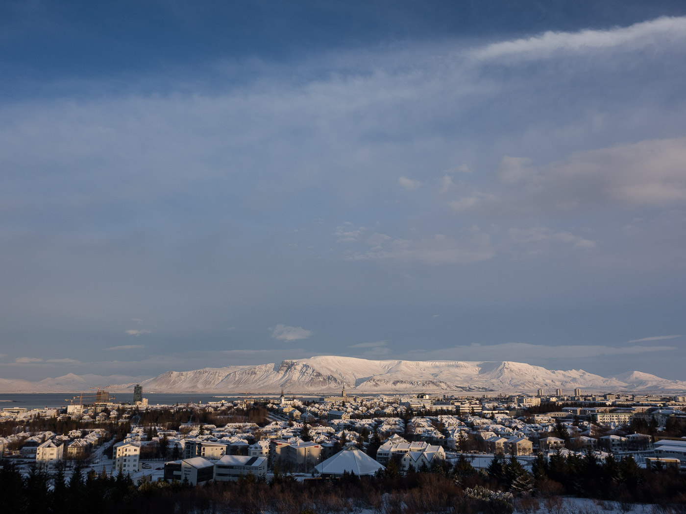 Reykjavík. Miscellaneous LXXXIII. - Weather and winter. V. (9 till 29 January 2015)